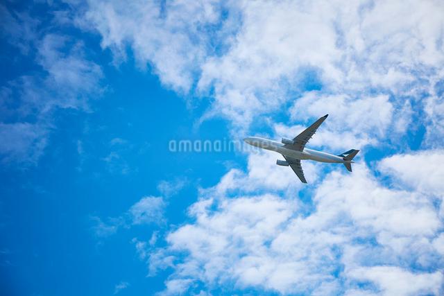 飛んでいる飛行機の写真素材 [FYI01464706]