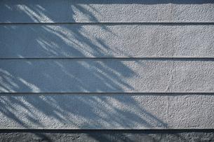 日本家屋の白い外壁の写真素材 [FYI01464792]