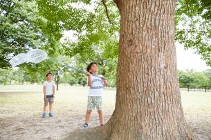 木に止まった虫を虫網で捕まえようとする兄弟の写真素材 [FYI01465092]