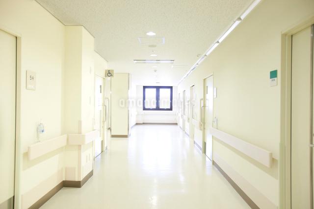病院イメージの写真素材 [FYI01465116]