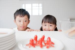 蛸ウィンナーを見て微笑む兄妹の写真素材 [FYI01465181]