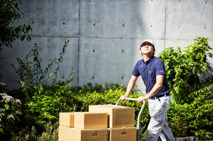 台車を使って段ボールを運んでいる男性の写真素材 [FYI01465274]