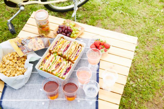 芝生とピクニックご飯と自転車の写真素材 [FYI01465628]