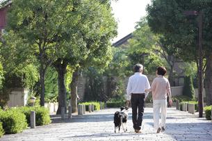 犬連れで散歩する後姿の中高年ファミリーの写真素材 [FYI01466046]