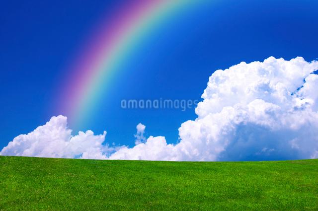 草原と青空と虹の写真素材 [FYI01466344]