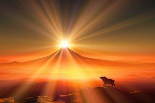 富士山の日の出とイノシシのシルエットのイラスト素材 [FYI01466403]