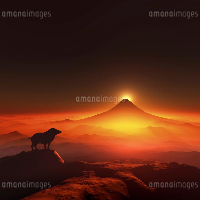 富士山の日の出とイノシシのシルエットのイラスト素材 [FYI01466743]