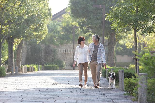 犬連れで散歩するミドルカップルの写真素材 [FYI01467199]