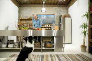 愛犬の前で料理をするシニア男性の写真素材 [FYI01467370]