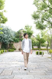 新緑の住宅街を歩く若い男性の写真素材 [FYI01467374]