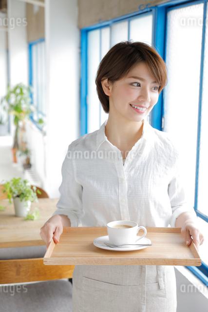 ウエイトレスの若い女性の写真素材 [FYI01467649]