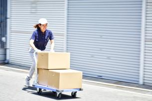 台車を使って段ボールを運んでいる女性の写真素材 [FYI01467714]