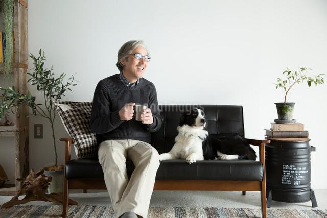 ソファで愛犬と過ごすシニア男性の写真素材 [FYI01467725]