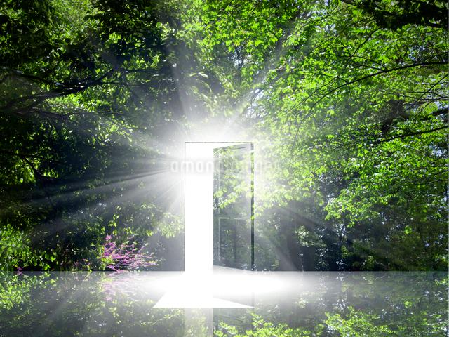 光が射し込むドアの写真素材 [FYI01468612]