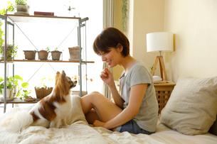 ベッドで小型犬と過ごす若い女性の写真素材 [FYI01468637]