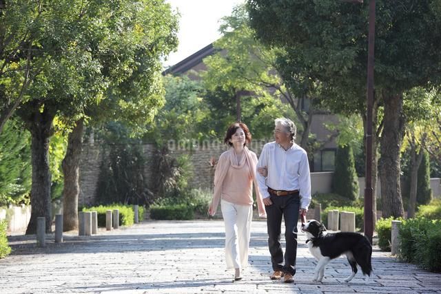 犬連れで散歩する中高年ファミリーの写真素材 [FYI01468966]