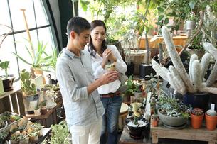 グリーンショップでショッピングするカップルの写真素材 [FYI01469809]