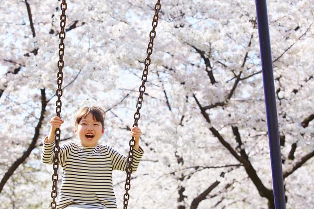 桜をバックにブランコをする女の子の写真素材 [FYI01469812]