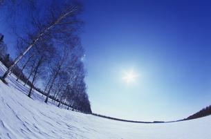 雪原に青空と太陽の写真素材 [FYI01470811]