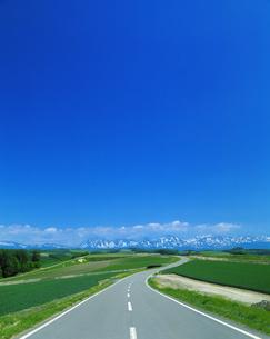 青空と残雪の十勝岳連峰に続く道の写真素材 [FYI01470902]