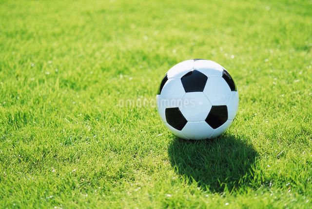 芝生の上のサッカーボールの写真素材 [FYI01470904]