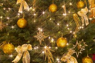 光のクリスマスツリーの写真素材 [FYI01471005]