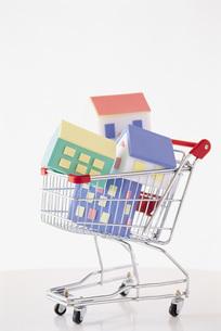 家とショッピングカーの写真素材 [FYI01471021]