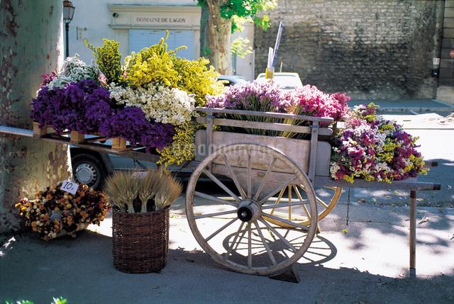 南仏の花屋さんの写真素材 [FYI01471023]
