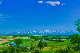 残雪の十勝岳連峰と青空に夏雲の写真素材 [FYI01471114]