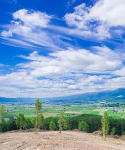 富良野点景  富良野盆地と夕張山地を望むの写真素材 [FYI01471183]