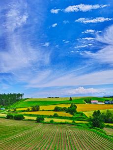 田園風景と青空に夏雲の写真素材 [FYI01471268]