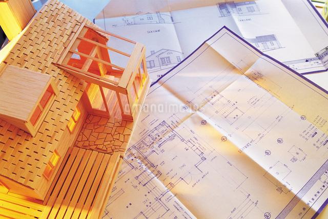 設計図と模型の家の写真素材 [FYI01471295]