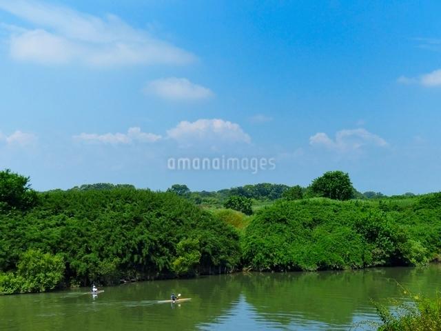 新緑の川でカヌーをする人の写真素材 [FYI01471318]