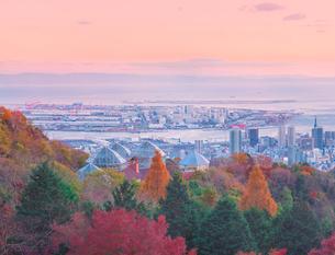 紅葉と夕暮れの神戸市街遠望の写真素材 [FYI01471357]