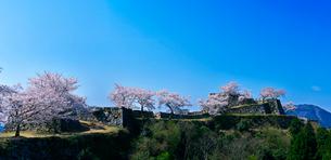 城跡の桜と青空の写真素材 [FYI01471395]