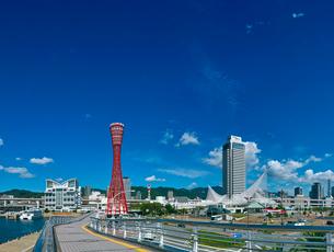 神戸ポートタワーとノートルダム神戸とホテルオークラの写真素材 [FYI01471399]