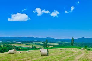 牧草地に青空と夏雲の写真素材 [FYI01471455]
