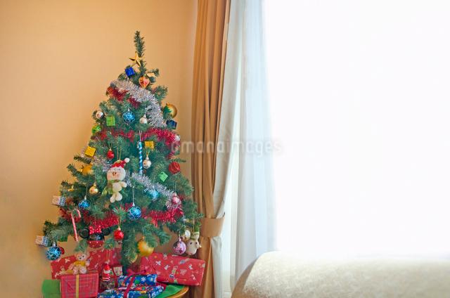 リビングルームのクリスマスツリーの写真素材 [FYI01471595]
