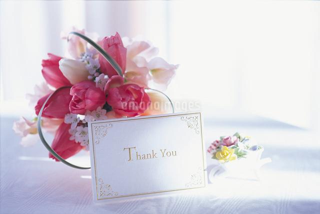 花とカードの写真素材 [FYI01471626]