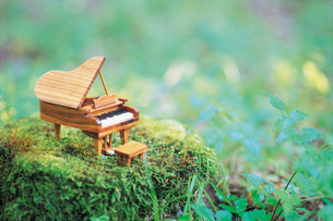 庭のピアノの写真素材 [FYI01471746]