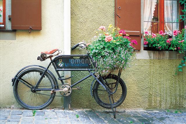 自転車の花飾りの写真素材 [FYI01471794]