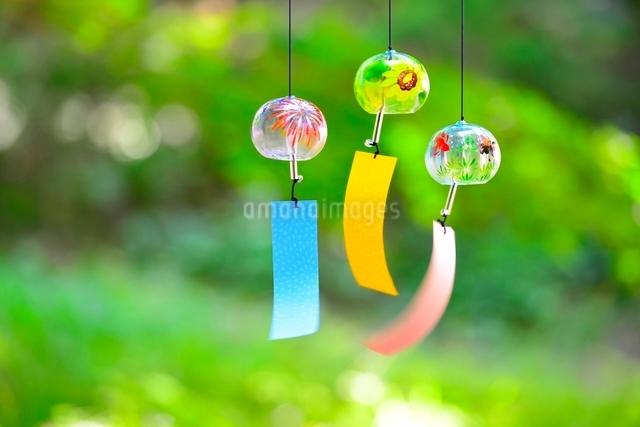 庭の緑と揺れている風鈴の写真素材 [FYI01471839]