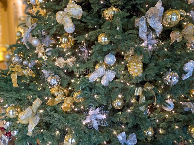 光のクリスマスツリーの写真素材 [FYI01471877]