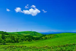新緑の牧草地と利尻富士の写真素材 [FYI01471935]