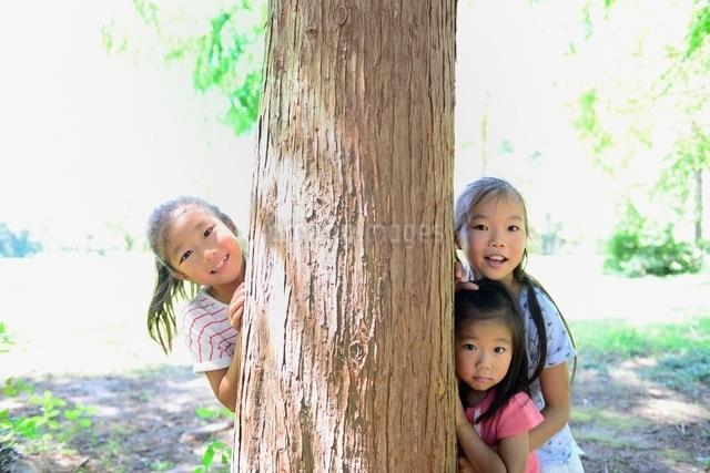緑の森の大木と笑顔の女の子達の写真素材 [FYI01472088]