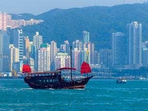 ヴィクトリア湾に浮かぶ赤い帆船の写真素材 [FYI01472158]
