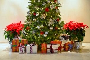 クリスマスツリーとプレゼントの写真素材 [FYI01472190]