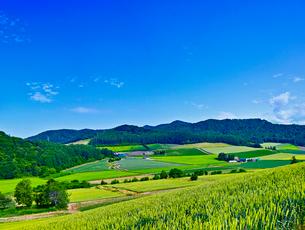 田園風景と青空の写真素材 [FYI01472327]