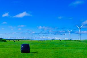 発電風車と新緑の牧草地に青空の写真素材 [FYI01472383]
