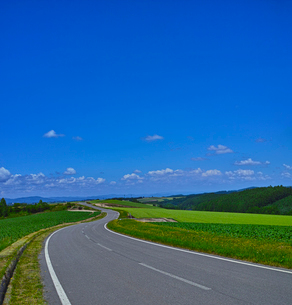 田園風景の一本道の写真素材 [FYI01472519]